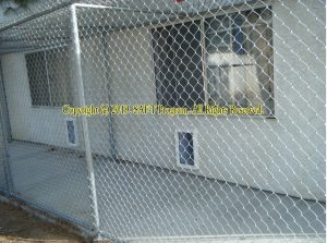 High Desert Domestic Violence Program (Victorville, CA) where in-room pets have a pet door with access to an outdoor private kennel.